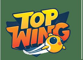 Отважные птенцы (Top Wing)