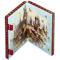 Адвент календарь аксессуаров Гарри Поттер (Harry Potter Accessories Advent Calendar) заказать