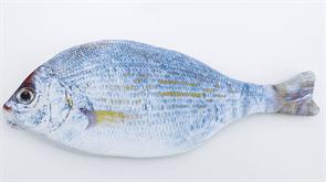 Пенал рыба Плотва купить