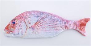 Пенал рыба Форель купить