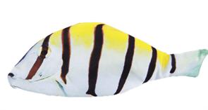 Пенал Полосатая рыба  купить