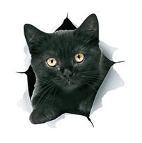 Купить наклейку на машину кот черный