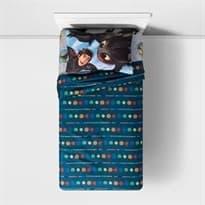 Постельное белье с принтом из мультфильма Как Приручить Дракона (How To Train your Dragon 3 Twin Sheet Set) купить Москва