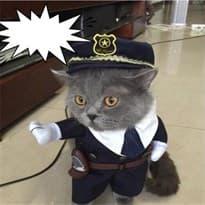 Костюм Полицейский для кота купить Москва