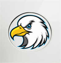 Наклейка на машину голова орла