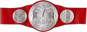 Пояс командного Чемпиона для детей WWE (WWE Raw Tag Team Championship Kids Belt) купить в Москве