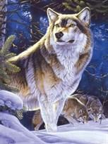 Алмазная мозаика Волк купить в Москве