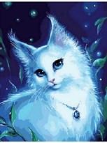 Картина по номерам Голубоглазая красавица купить в России