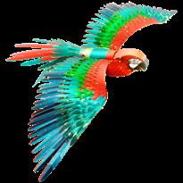Металлический 3D конструктор Попугай (Premium Series Parrot Metal Earth) купить в Москве
