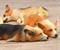 Магниты в форме спящих собак Корги - фото 13720