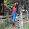 Заказать классический костюм Человека Паука (Spider-Man)